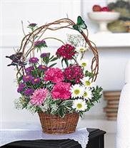 Bouquet panier et papillons TF11-1