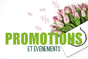 Promotions-evenements